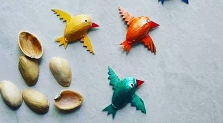 Antep Fıstıklarından Kuş Yapalım