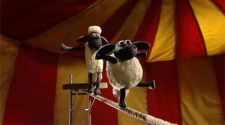Koyun Shaun - En İyi Timmy